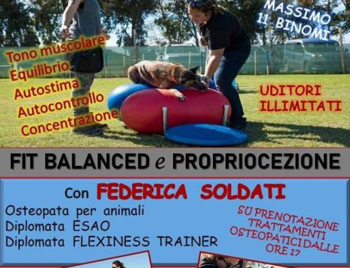 Stage di fit balanced